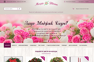 Screenshot of website Flower Shop