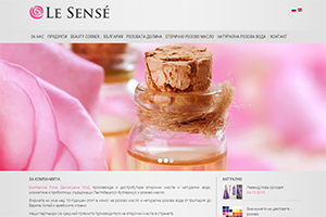 Screenshot of website Le Sense