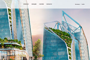 Website design and development of NV Tower