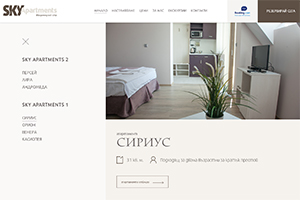 Screenshot of website SkyApartments