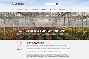 Screenshot of website Strabo