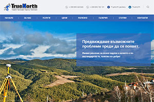 Website design and development of TrueNorth
